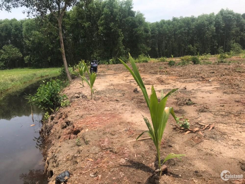 Cần bán gấp lô đất thổ vườn tại xã Vĩnh Thanh,Vành Đai 3