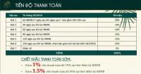 Căn hộ mặt tiên biển giá chỉ từ 2t2/căn, ưu đãi chính sách lên đến 40%