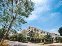 Cần bán căn biệt thự song lập 175m2, mặt tiền rộng, giá tốt: lh 0354806613