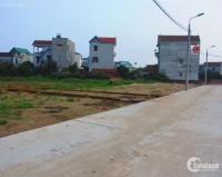 Bán đất đường Tân Tạo, chợ đệm Nguyễn Hữu Trí chính chủ sổ hồng riêng, giá rẻ 75