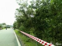 Đất SHR MT đường Nguyễn Văn Khạ. 100m2 chỉ 680 triệu/nền. Hỗ trợ 70% góp dài hạn
