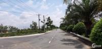 Ngân hàng BIDV tiến hành phát mãi 10 nền đất ngay chợ Tân Phú Trung, Củ Chi, TP.