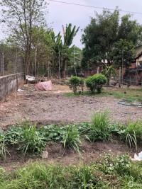 Bán 5.500m2 đất vườn xã Trung An,Củ Chi.