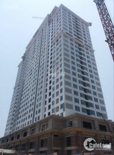 Cần tiền bán gấp căn 92m2 dự án IA20 Ciputra, chênh 140tr bao chi phí, tầng đẹp