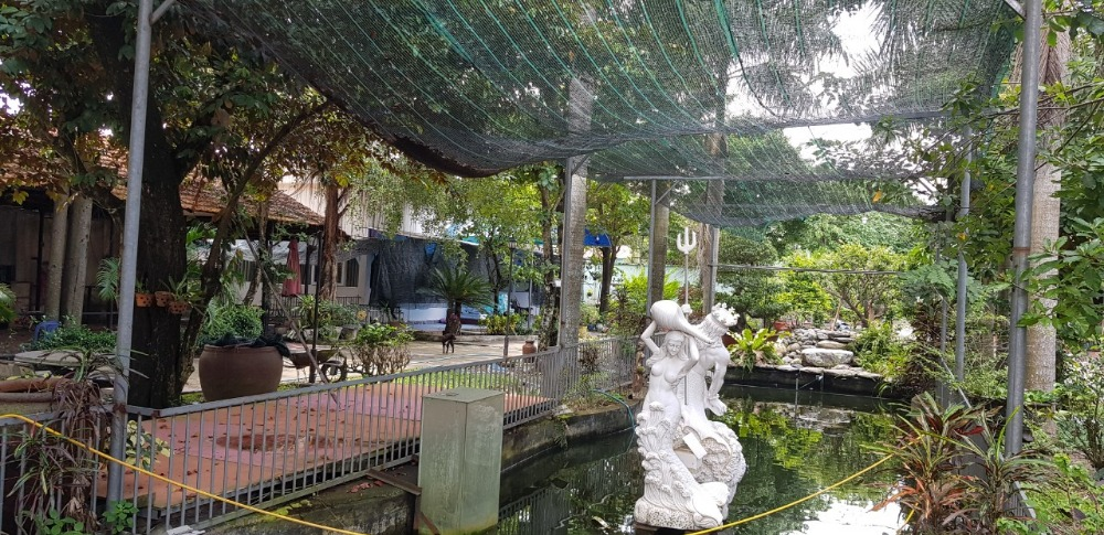 Biệt thự sân vườn mặt tiền đường Phan Đăng Lưu Thủ Dầu Một