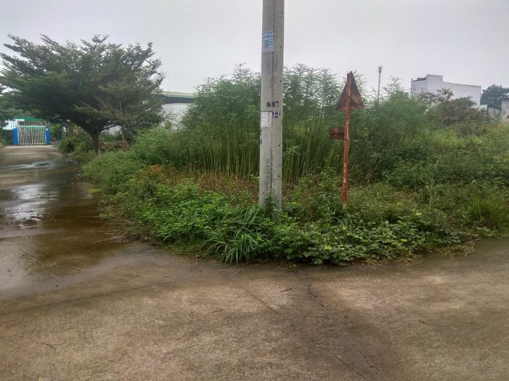 cần bán 3 nền góc 2 Mặt tiền  khu phố 4 phường tân định gần KCN mỹ phước 3..
