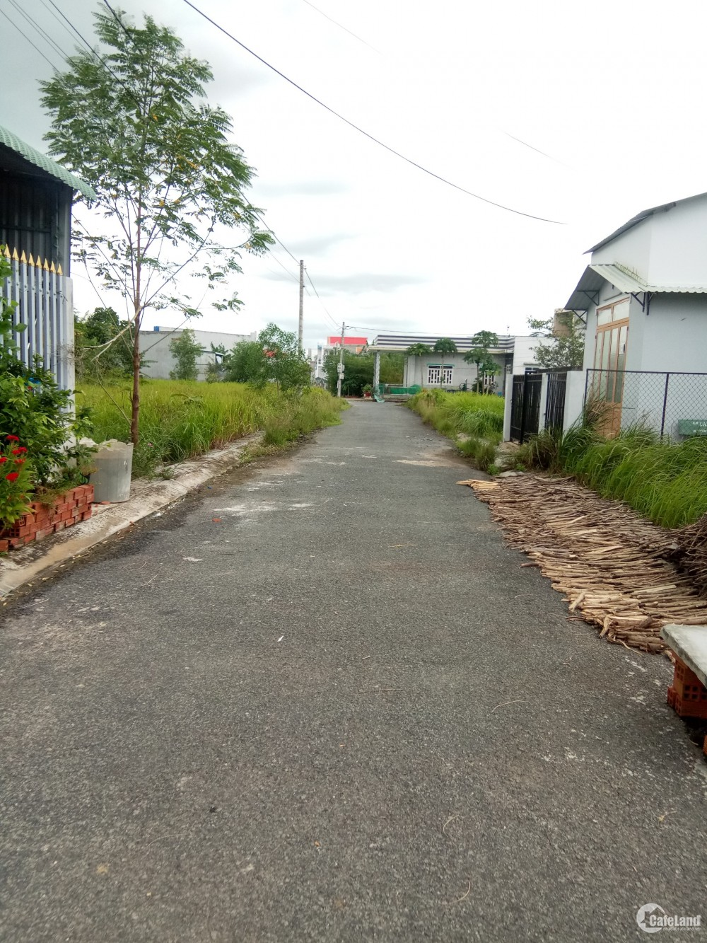 Gấp, Cần bán nhanh cặp nền đối diện công viên khu Phúc Giang, DT 104m2,giá 680Tr