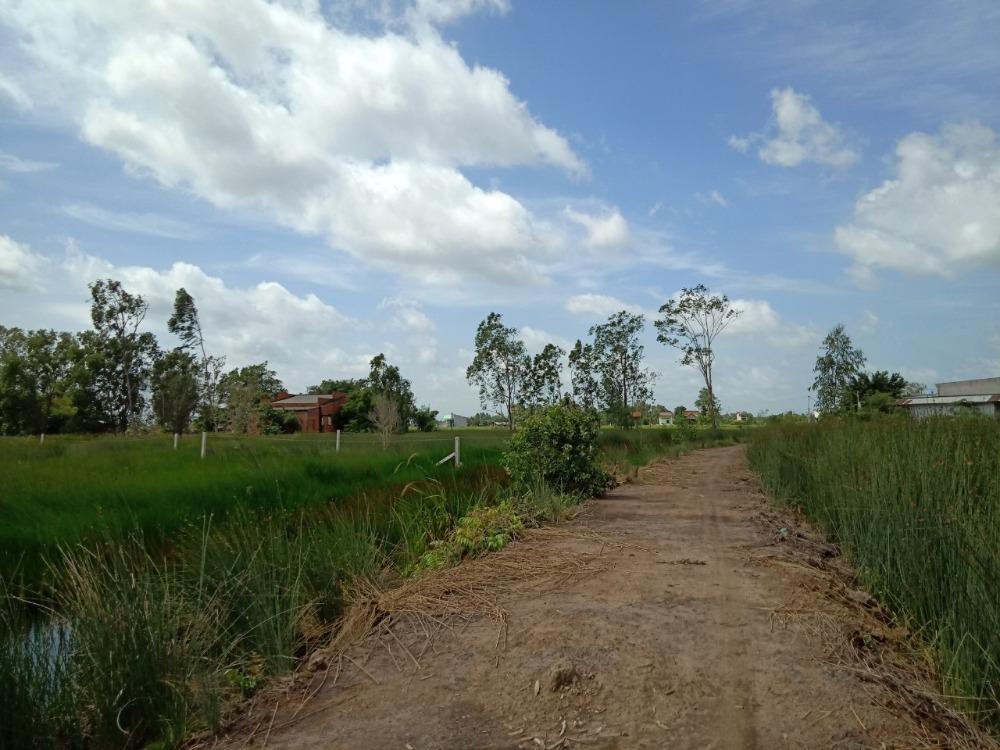Cần bán lô đất vườn chính chủ tại ấp Tràm Lạc, huyện Đức Hòa, Long An
