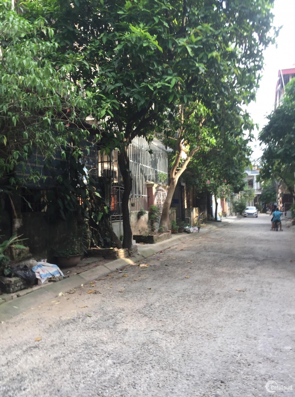 Chính chủ bán đất đấu giá mặt tiền Cổ Giang, Lệ Chi, Gia Lâm, HN. LH 0969956894