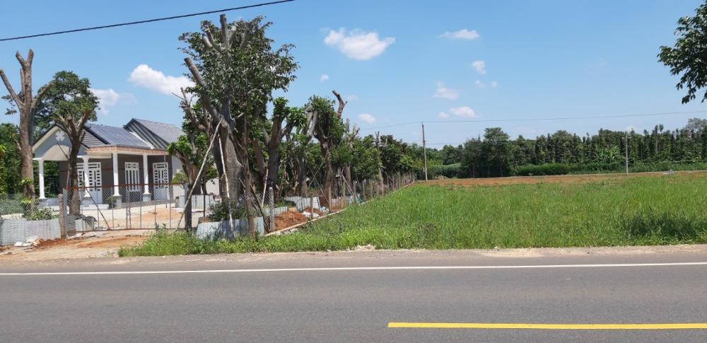 19 lô đất thổ cư-sổ hồng riêng, mặt tiền đường nhựa 22m giá 6tr/m2,chiết khấu 5%