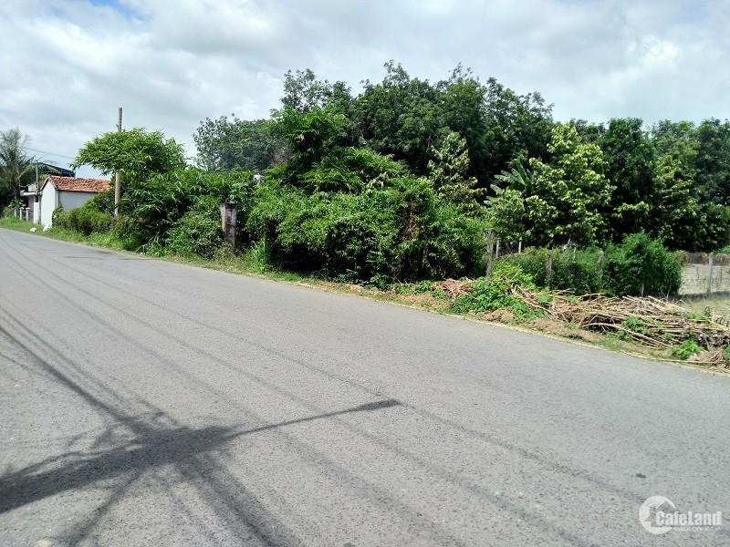 Bán lô ĐX013 P. Phú Mỹ, gần chợ Phú Mỹ TP. Thủ Dầu Một, Bình Dương