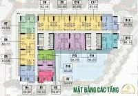 Cập nhật tiến độ thi công, bảng giá, CSBH mới nhất tháng 9 dự án An Bình Plaza,