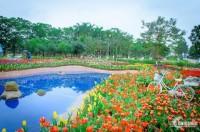 Thephoexnix garden cơ hội cho các nhà đầu tư thông minh
