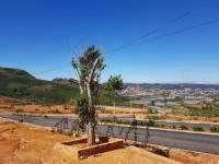 Dự án Siêu đẹp giá chỉ từ 15 triệu /m2