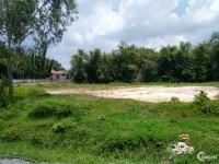 Bán đất mặt tiền đường Cây Trôm Mỹ Khánh,500m vuông,giá 1,5 tỉ.