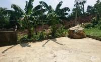 Bán 2450m đất Hòa Sơn, Lương Sơn, Hòa Bình gần QL6 chỉ 1.8 tỷ