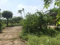 Cần bán vài lô đất ở 1 sẹc Quách Thị Trang, Nhơn Trạch