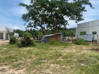 Biệt thự nghỉ dưỡng cách Sân Bay 1km