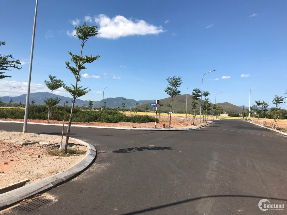 Quy Nhơn New City - Đất nền mặt tiền quốc lộ 1A - 490 triệu/50%/nền