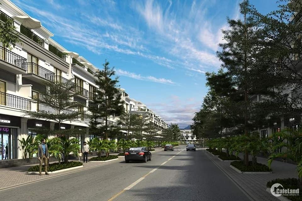 Tại sao bạn nên tham quan FLC Olympia trước khi mua bất cứ bất động sản nào
