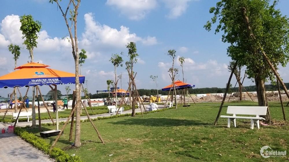 Đất Nền Giá Rẻ Bàu Bàng, Giá 550Tr/Nền/Sổ Đỏ/Thổ Cư