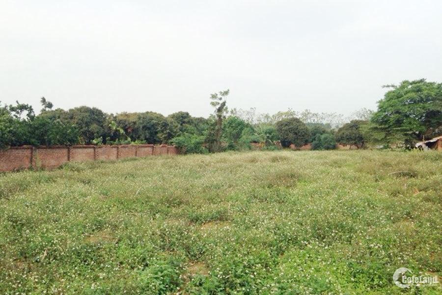 Bán đất rẻ đường Bờ Nhà Thờ, Phước Lý 8,2x 33,1m2. 2,5 tỷ. SHR