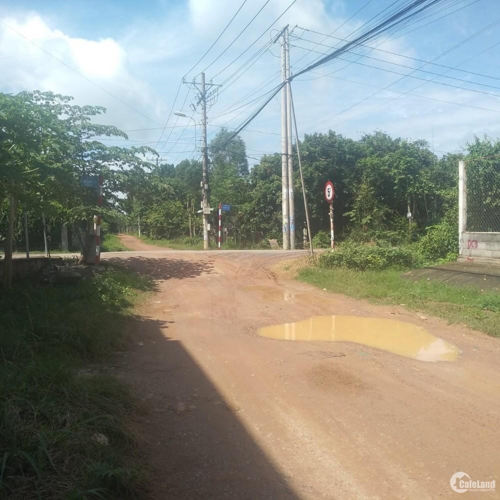 Đất đường số 387 xã Tân An Hội, thổ cư 1930m2, giá 8 tỷ