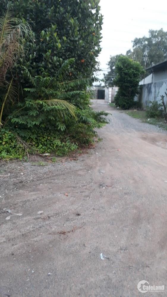 Cần bán 4 lô đất LK tại 259 Sông Lu,Ấp An Hòa,Trung An,Củ Chi,HCM