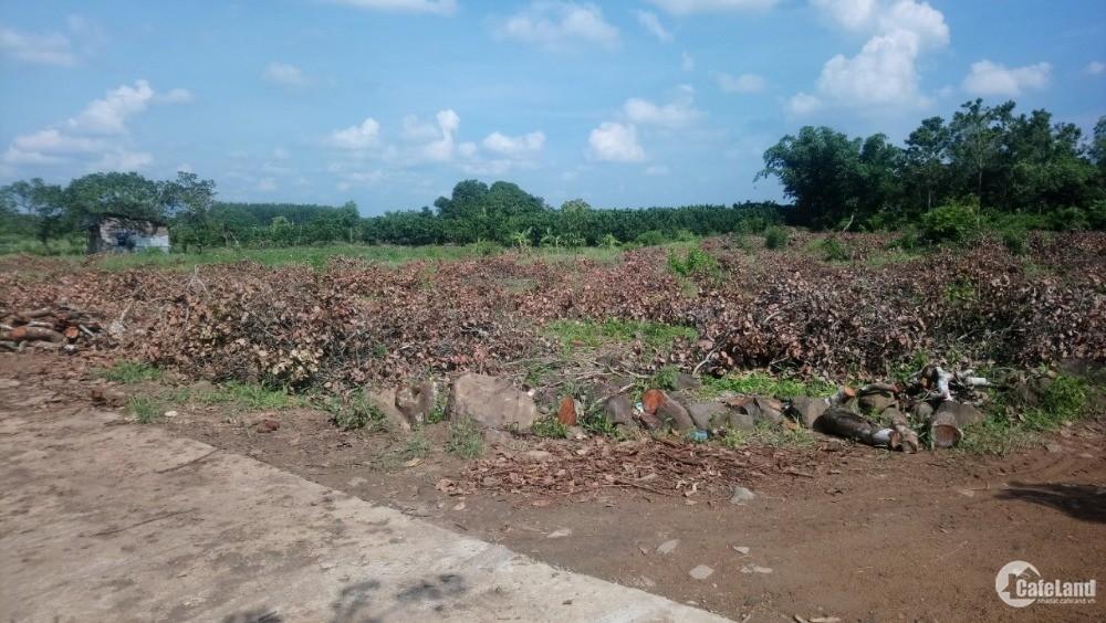 Cần bán đất 5000m có sổ Hồng ở Định Quán giá 1tỷ2 . 0767090051