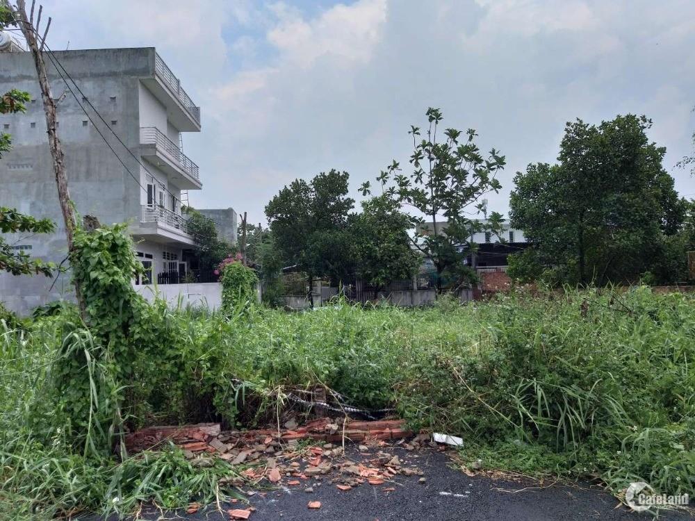 Cho thuê Đất trống 300m2 Đường số 10 Nguyễn Duy Trinh, P.BTĐ, Q.2