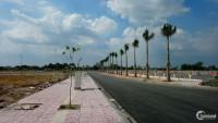Bán đất nền dự án: Lotus New City, SHR, giá: 6 triệu/m2