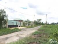 Đất xưởng Hòa Phú, huyện Củ Chi, 2505m2