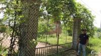 Bán Đất Nhà Vườn Nghỉ Dưỡng đường Quách Thị Trang, xã Vĩnh Thanh, Nhơn Trạch-ĐN