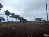 Đất nền cần bán tại bình phước MT DT 741, giá chỉ 285tr/100m2. Liên hệ ngay thôi