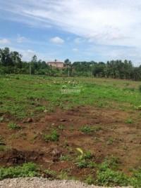 Cần bán lô đất gần UBND xã Hưng Lộc cách QL.1A 500m