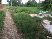 Cho thuê đất trống đường số 10 Nguyễn Duy Trinh rộng 8m.