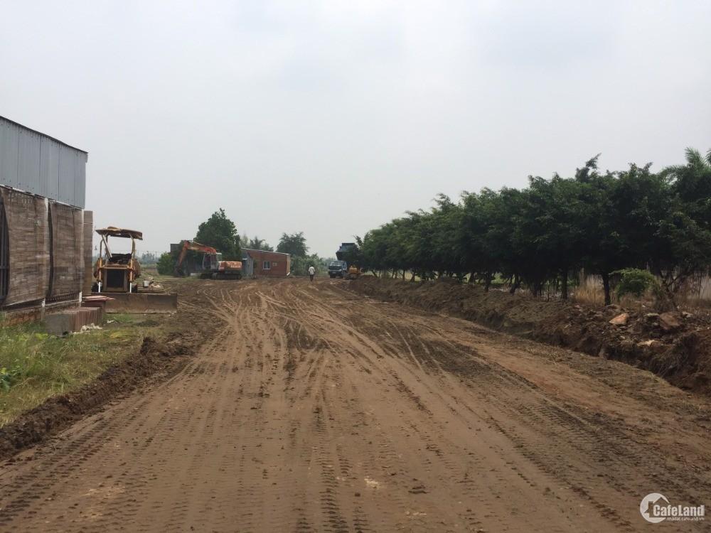 Xu hướng đầu tư đất nền HOT nhất hiện nay tại Long An