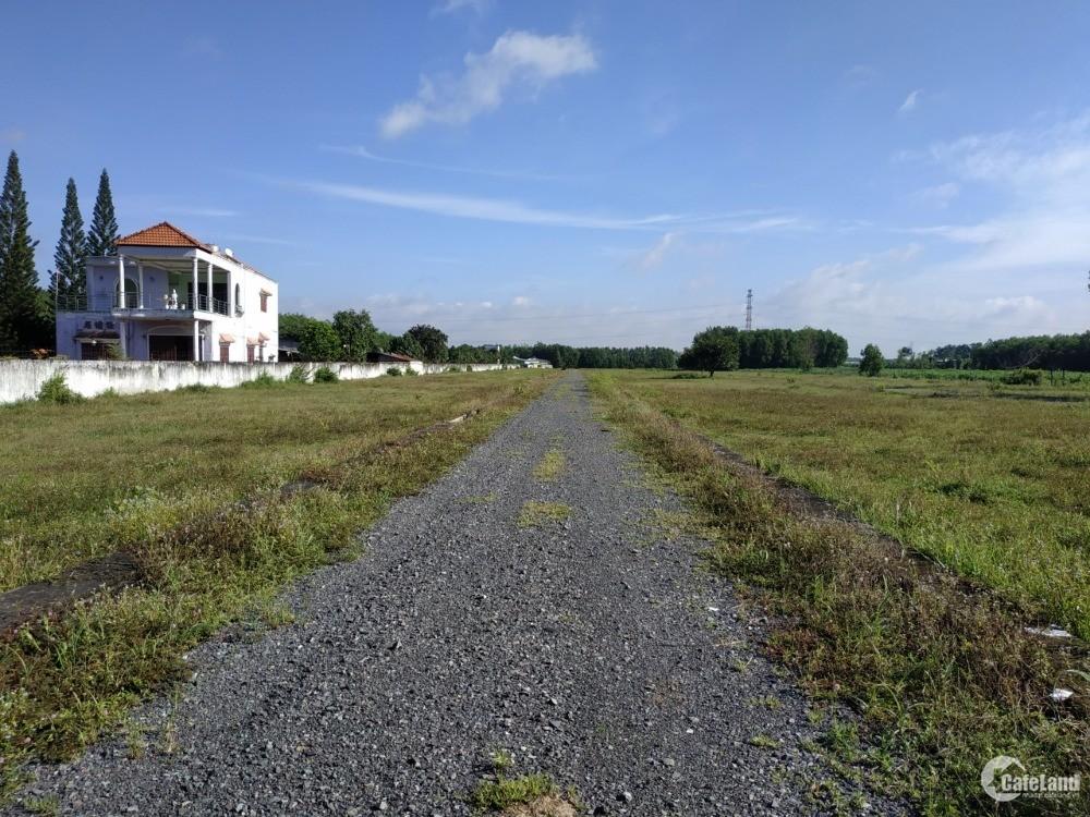 Chính chủ bán 513m2 đất ONT, sổ đỏ, Long Phước gần sân bay LT chỉ 2,3 tỷ
