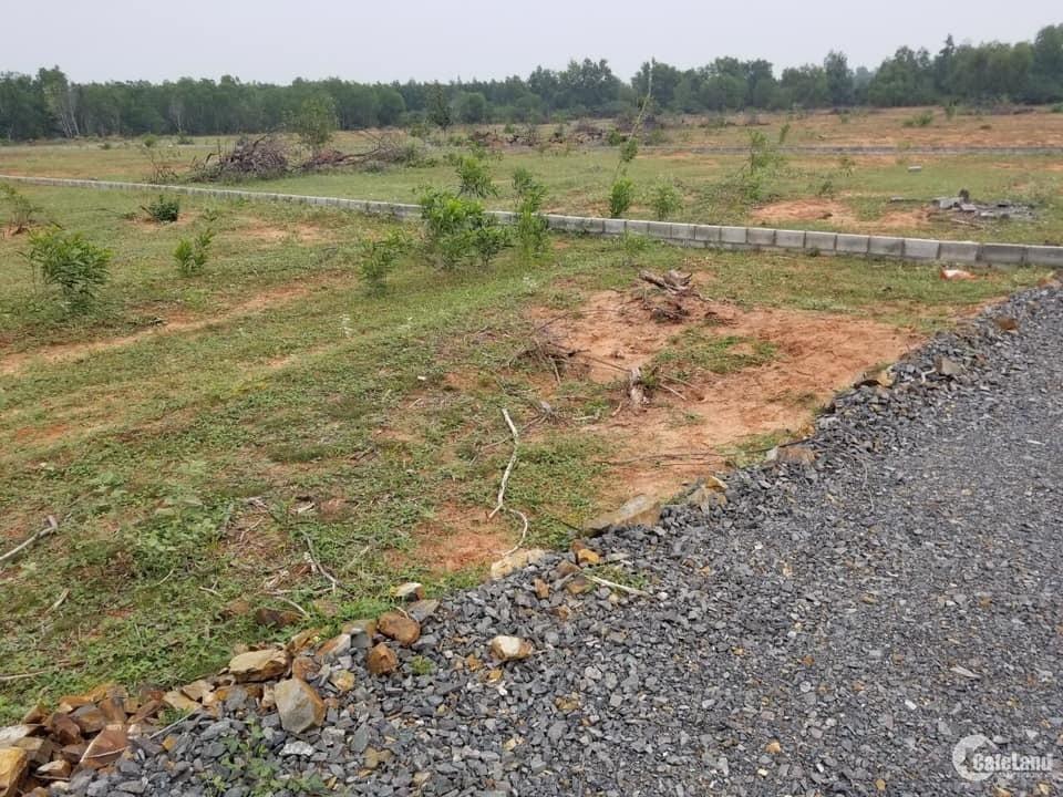 Chính chủ bán lỗ trước Tết lô đất 1000m2 đã có sổ Phan Thiết  giá 1,6tr/m2