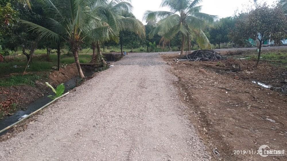 Đất gia đình cần bán gấp 1000m2 đất trồng cây măng cụt gần thị trấn Dầu Giây