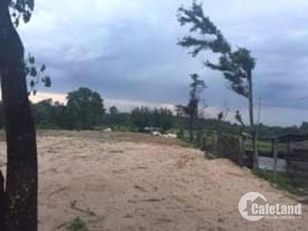 Bán đất P.Thuận Giao,Cách Cao Tốc Mỹ Phước-Tân Vạn 200m, dt:12.000m2,Giá: 4tr/m2