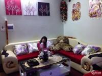 Cần bán nhanh căn hộ Kim Văn Kim Lũ, 45m2, giá chỉ 800 triệu