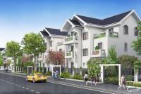 Bán nhà biệt thự dự án Times Garden TP Vĩnh Yên chỉ 18,25 triệu/m2.