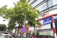 Bán nhà mặt phố Trần Hưng Đạo, Phường Phan Chu Trinh, Quận Hoàn Kiếm, Hà Nội