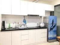 Cho thuê căn hộ 1PN full nội thất giá rẻ ngay Mai Chí Thọ.