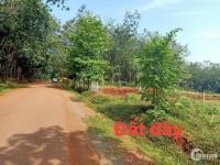 Đất Thị Xã Bình Long - Bình Phước - 150m2 đất nền thích hợp đầu tư