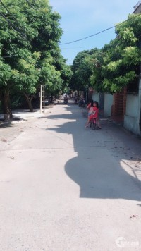 Bán đất khu đấu giá thôn Hoàng Long, xã Đặng Xá, Gia Lâm