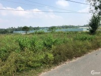 Đất chính chủ Cây Trôm Mỹ Khánh,Thái Mỹ,Củ Chi.