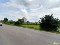 Bán đất đường Ôtô ở Phú Long cần bán gấp giá rẻ!