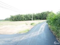 bán rẻ miếng đất để xây phòng trọ cho thuê gần nhà máy all wells!